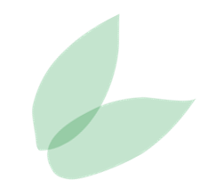 two leaves - png